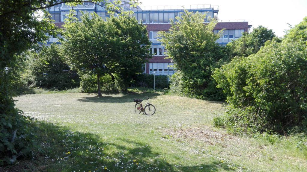 Foto vom Penta-Park, Vangerowstraße